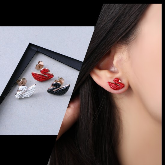 Women's Earrings 6639
