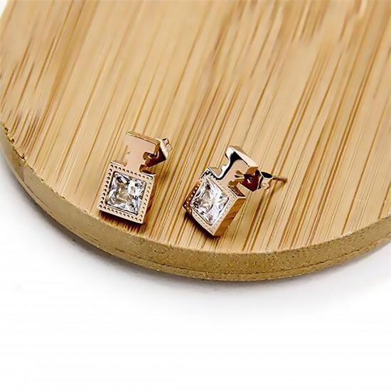 Women's Earrings 6648