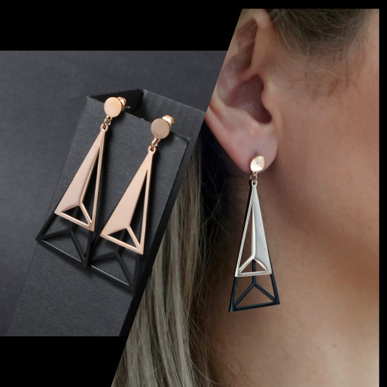 Women's Earrings 6717