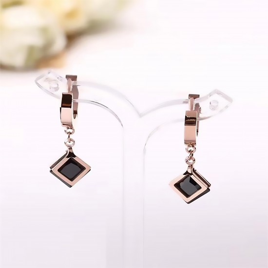Women's Earrings 6735